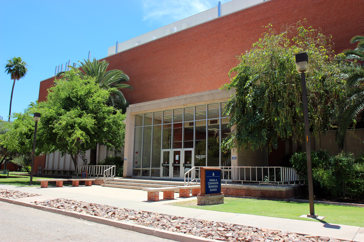 The University of Arizona Facilities Management department is currently in the process of renovating the Animal and Comparative Biomedical Sciences Building, which houses the veterinary sciences department. The building needs more than $9.5 million of repairs. (Photograph by Julianne Stanford/AZCIR)