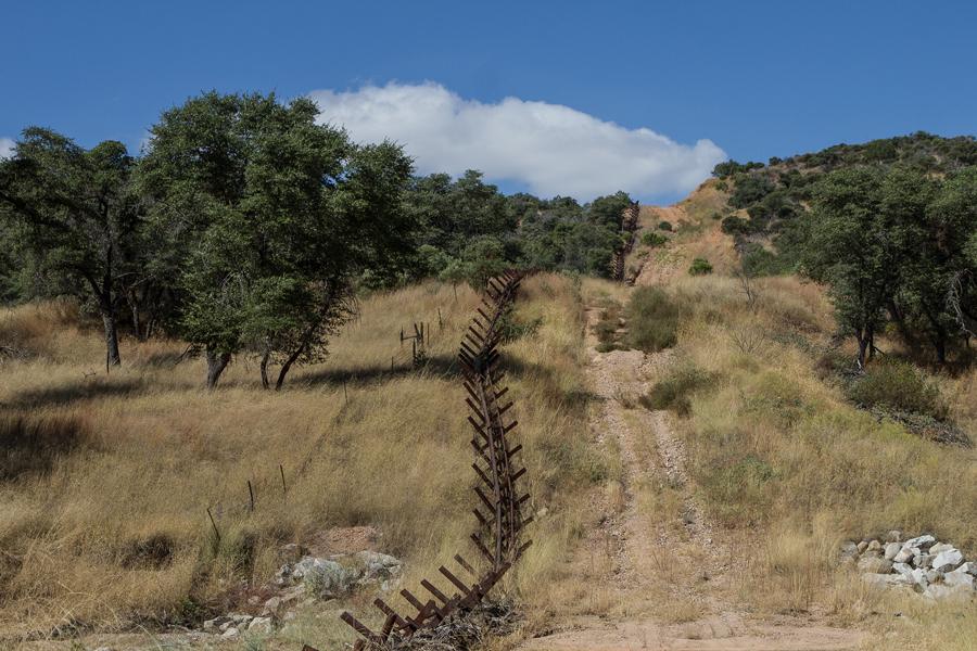 Border wall proposal threatens delicate wildlife habitats